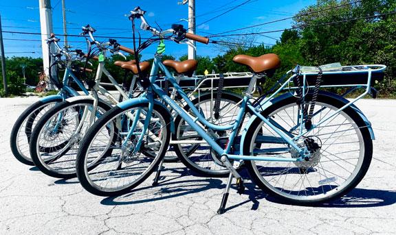 New Arrivals RetroSpec E-Bikes 48 and 36 Volt